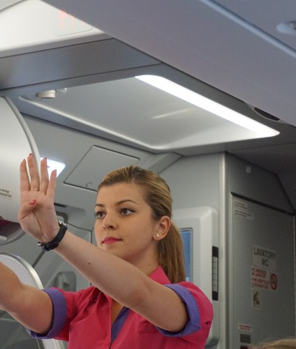 British Airways Flight Attendant